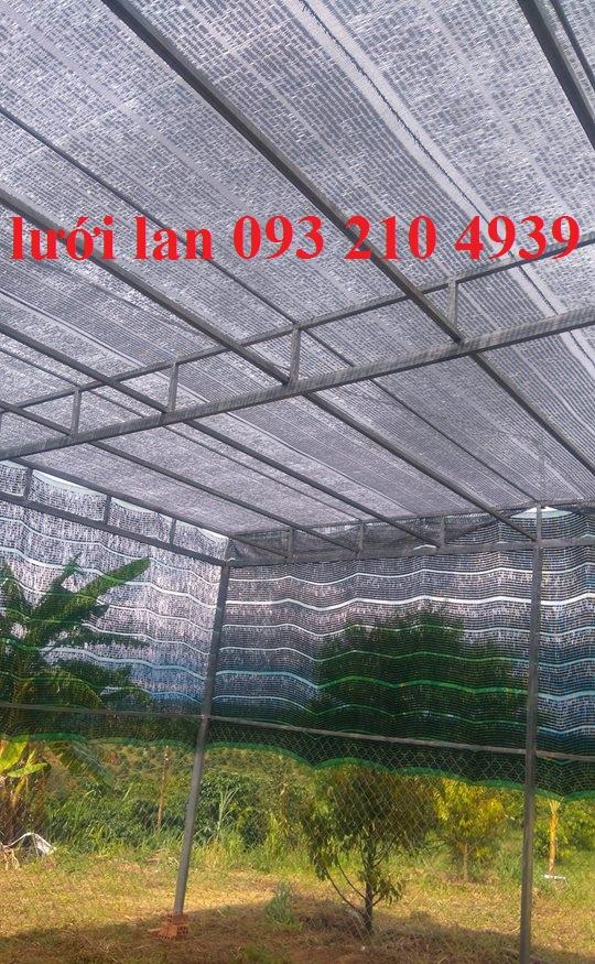 Lưới che nắng nhà trồng lan